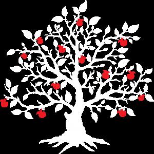 Solsticio, Rebelde and Company Address Logo