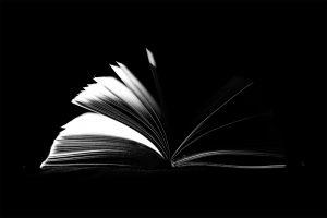 Solsticio, Rebelde and Company Book